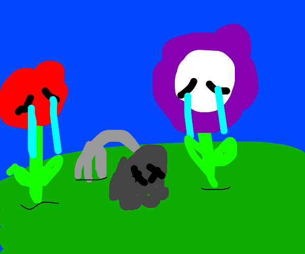 Flowers mourning their death
