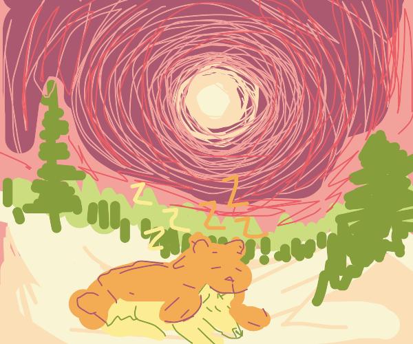 Bear Cuddles Wolf