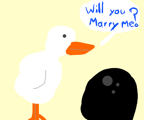 Duck proposes to a uh... a Bowling Ball?