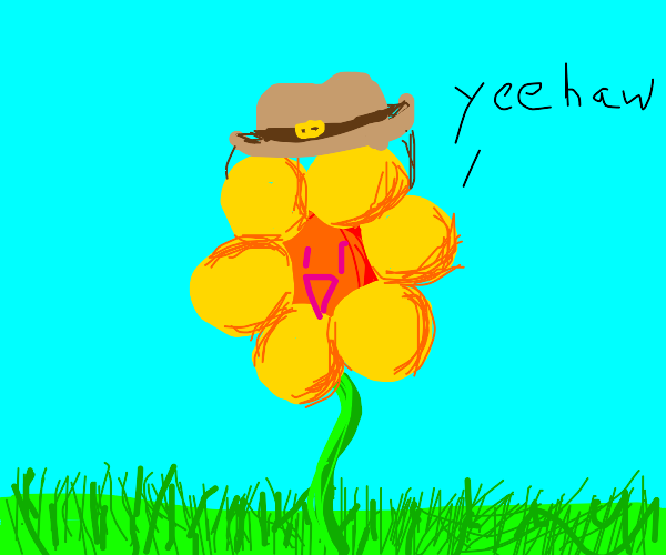 a flower with a cowboy hat