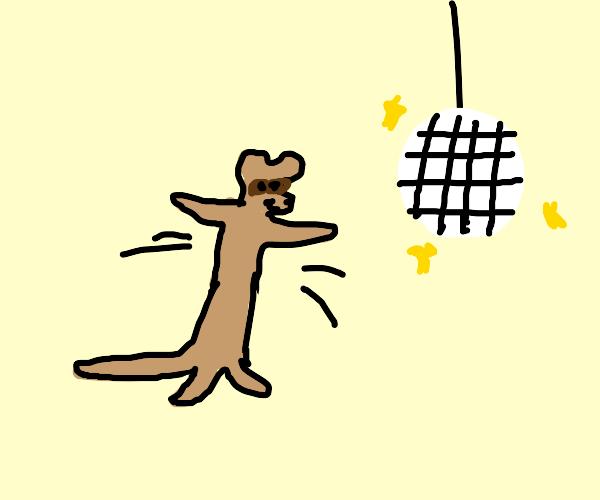 Dancing ferret.