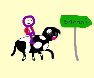 Boy rides happy cow to school