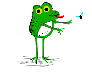 frog catches fly