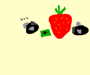 Fly buys a strawberry