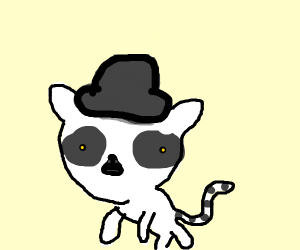 Lemur with a tophat