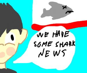 Shark news
