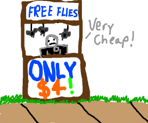 Free flies for only $4!