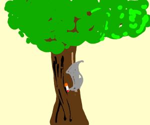 a smoking tree