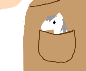 small white horse in a trench coat pocket