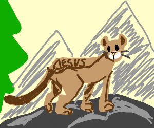Mountain lion with markings named Jeasus