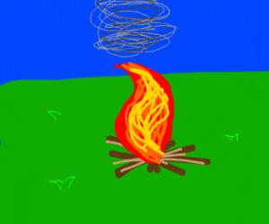 campfire in an open field