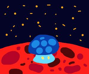 Mushroom on Mars