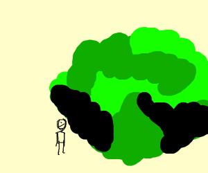 Gigantic Lettuce