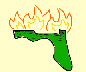 florida is on fire