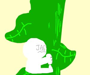 Jack on the Beanstalk