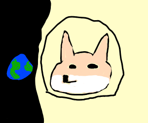 Geographically Agnostic Doge Astronaut