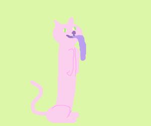 LONG tongued cat