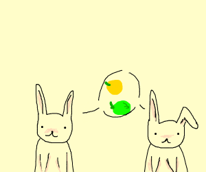 Bunnies curious about lemons and limes
