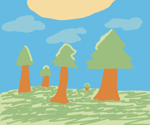 Sunny Forest landscape