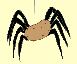 potato spider