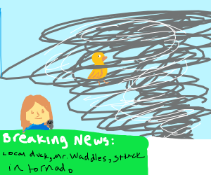 News: Duck in tornado crying