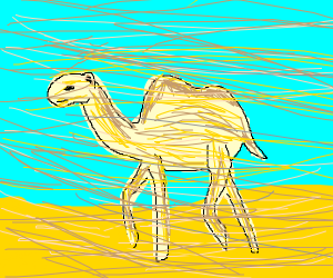 camel in sand storm