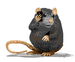 Rat on a phone