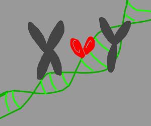 Y <3 X