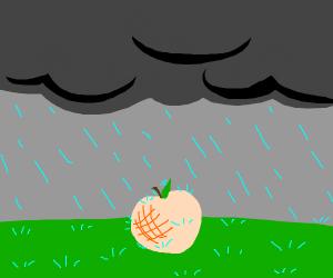 Peach gets dumped on by rain cloud