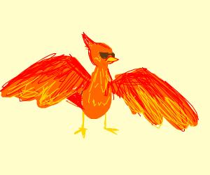 Phoenix (as in cool fire bird)