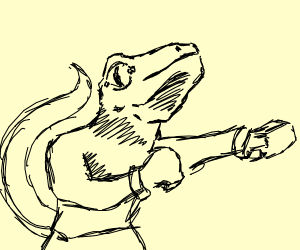 boxing lizard