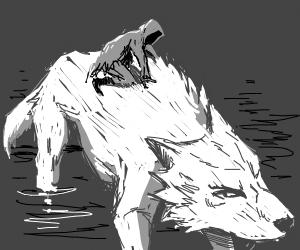 something grey riding a dog