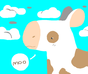 The Cow goes Moo