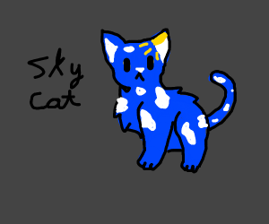 Cat with the sky in its pelt