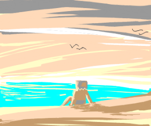 Beach in a Box