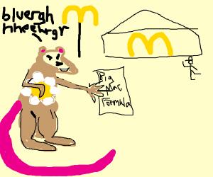 Flower rat steals the secret big mac formula