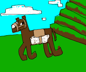 Brown and white horse in a field