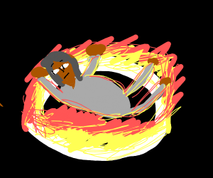 i fell into a burning ring of fire