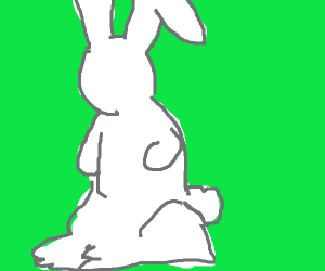 Bunny without a face