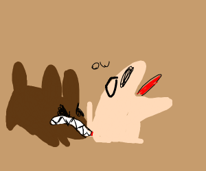 dog bites other dog