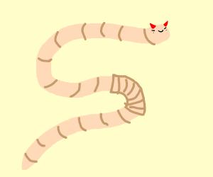 Worm Devil
