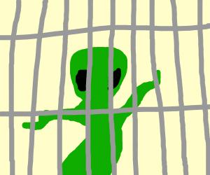 ailen in jail