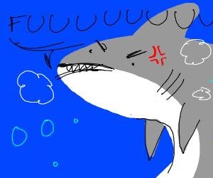 Pissed off shark says FUUUUUUUUUUU