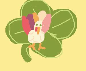 lucky turky