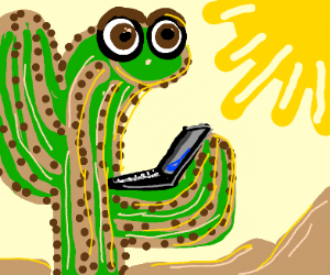 a cactus holding a laptop