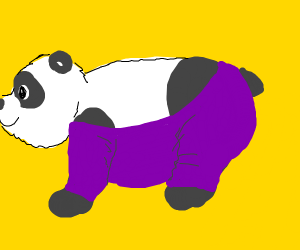 Panda with leggings.