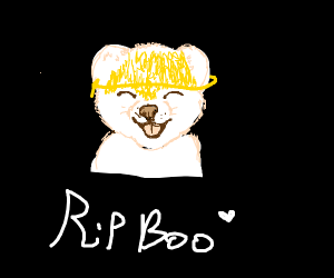boo the dog died