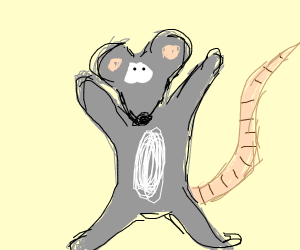 Cute rat wants hug