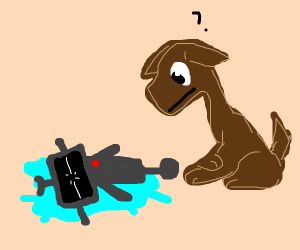 Dog & dead robot