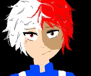 red + white hair (todoroki)